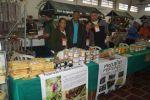 Galeria-Projeto-Agroextrativismo-Vegetal-Frutos-do-Cerrado-05